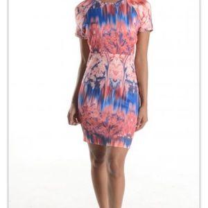 Zara W & B Collection Sheath Dress Size 5